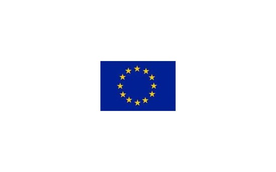 European Union Flag logo