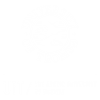 Ui T_Consortium _Logo _white _on _dark