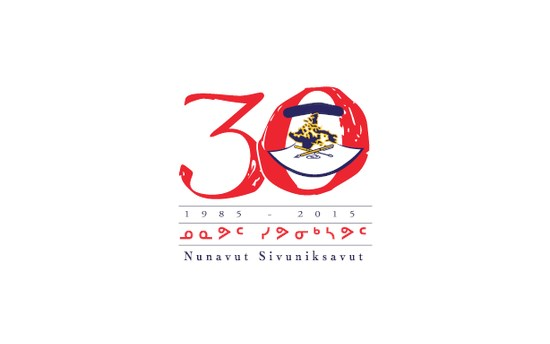NS@30 conference logo